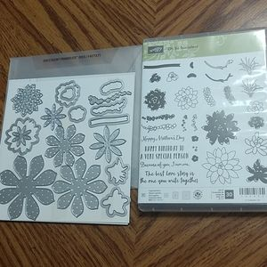Stampin' Up Oh So Succulent & Dies